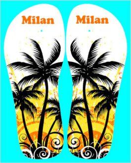 Slippers Hawai